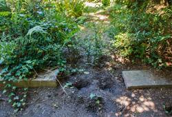 Der Grabstein für Horst Wessel wurde entfernt; Photo: Theo Schneider.