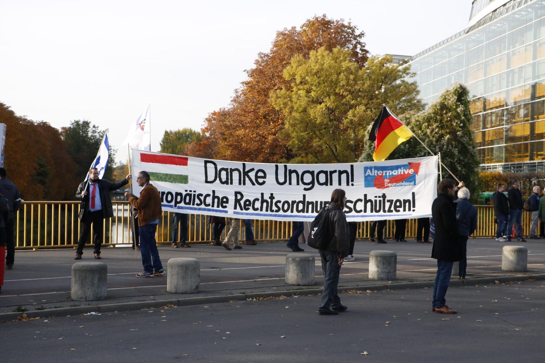 AfD-Transparent am 24. Oktober 2015. © apabiz